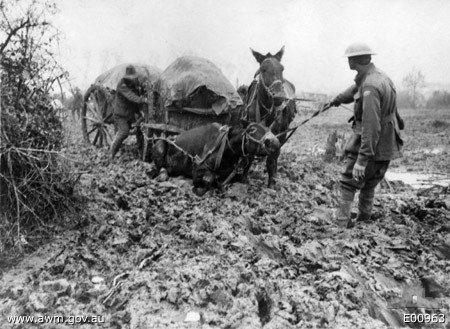 Bringing up supplies through the mud (AWM E00963)