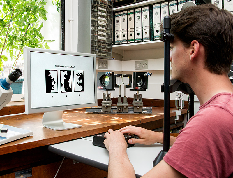 A student in the Department of Psychology prepares an experiment on face perception. The task is to identify which of the three images on the screen contains a human face. Normal people vary considerably in this ability, and the research is designed to discover the genetic bases for these individual differences. Photo by Roeland Verhallen.